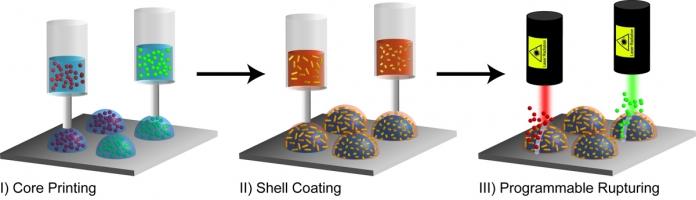 Impresión 3D para fabricar biocápsulas programables
