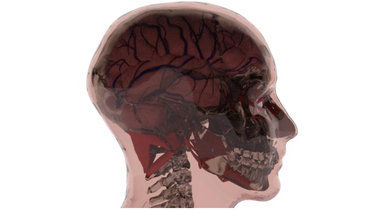 head-02-768x424