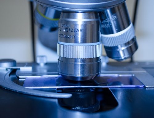 La impresión 3d celular reducirá la experimentación con animales